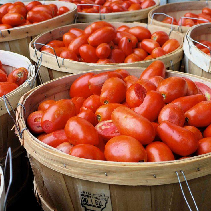 gds-tomatoes